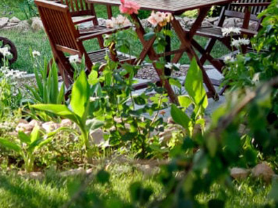 Garden Setup, Auburn, AL