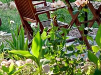 Garden-Setup_2