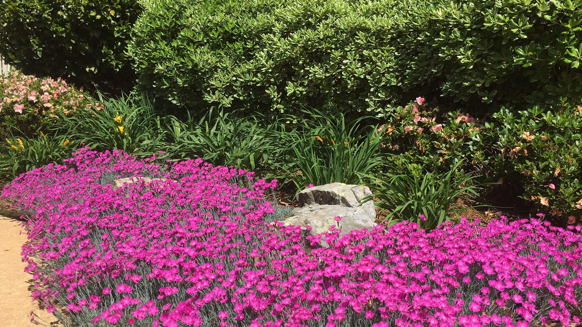 landscaping auburn alabama
